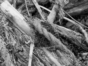 frayed rope and splintered wood